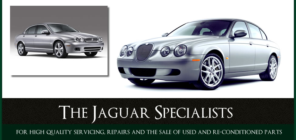 The Jaguar Specialists